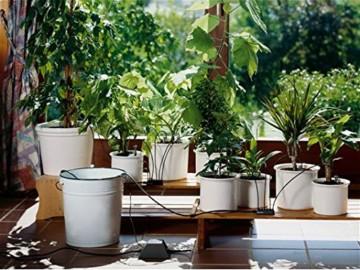 GARDENA 1265-20 city gardening Urlaubsbewässerung, Bewässerung wird täglich für 1 Minute über Transformator mit integriertem Zeitschalter aktiviert, bis zu 36 Topfpflanzen können automatisch bewässert werden - ideale Urlaubsvertretung für Ihre Pflanzen - 3