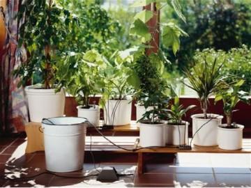 GARDENA 1266-20 city gardening Urlaubsbewässerung, bedarfsgerechte Pflanzenbewässerung über drei Verteiler mit unterschiedlichen Wasserabgabemengen, täglich wird 1 Minute vollautomatisch bewässert - mit 9 Liter Vorratsbehälter. - 3